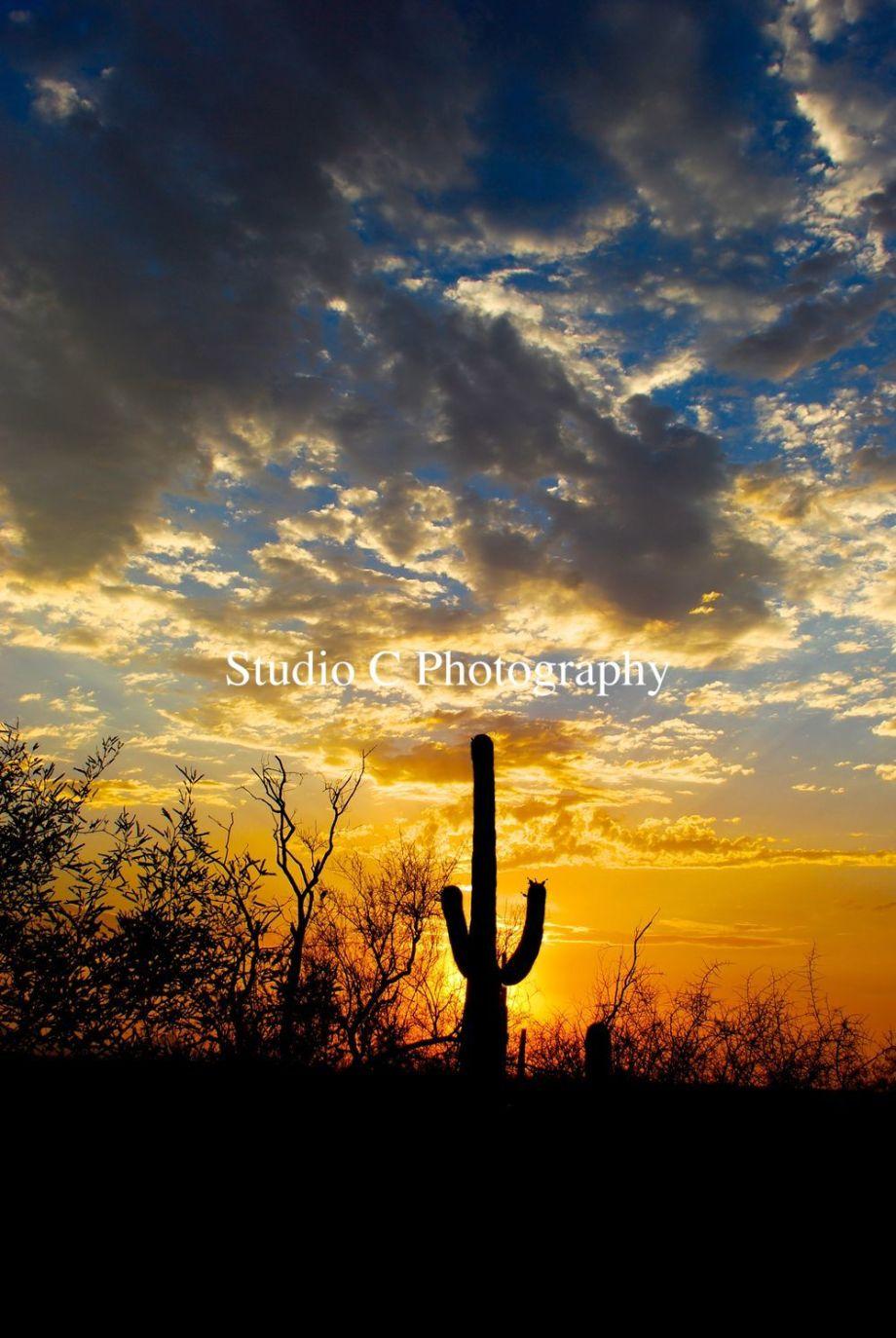 Desert Sunset2
